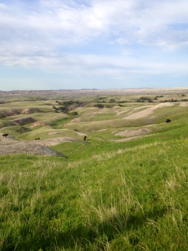 I was not sure what to expect of South Dakota, but found it to be overwhelmingly beautiful.
